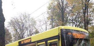 "У Львові ""польські бляхи"" влетіли у новенький автобус Садового. Фото Варта-1"