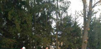 На Львівщині розшукують свідків жахливої аварії за участі іноземців біля Личаківського цвинтаря